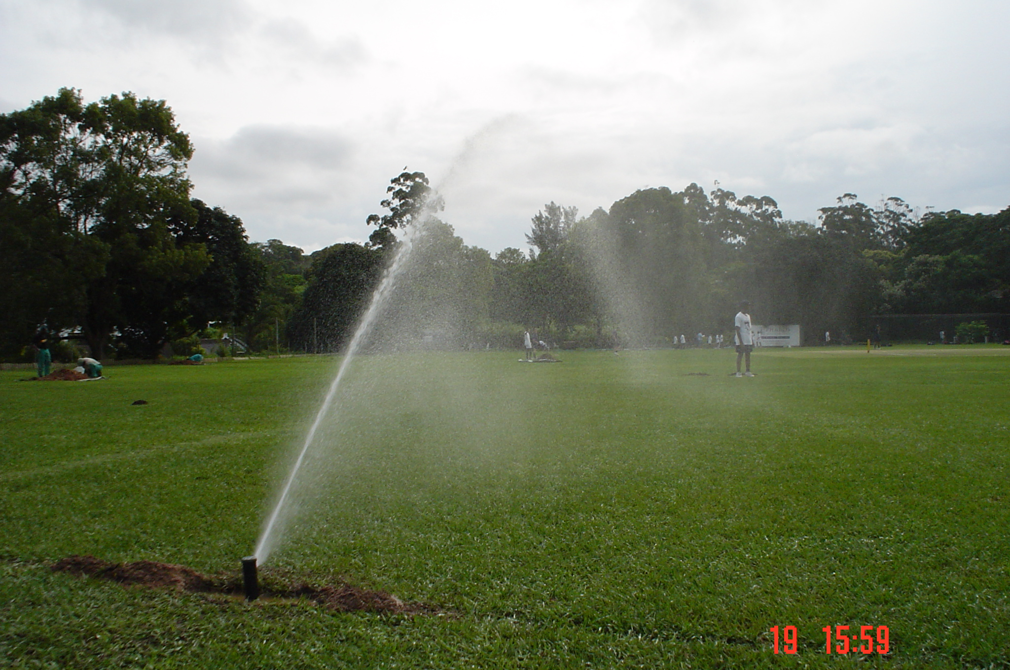 Step Irrigation KZN